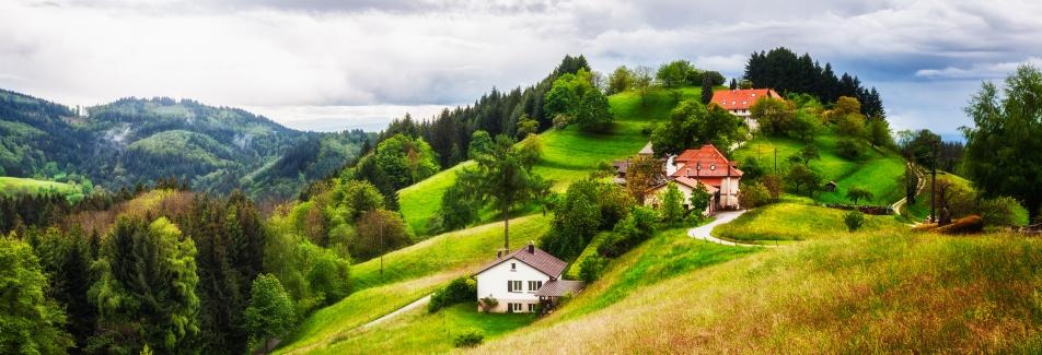 טיול מאורגן לעמק הריין, לוקסמבורג, שטרסבורג והיער השחור